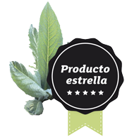 Alcachofas y planta de alcachofas blancas de Tudela